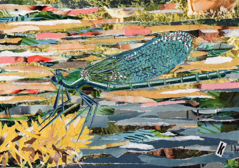 Green collaged dragonfly